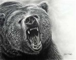 Bear growl